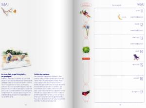 calendrier lunaire dans l 39 agenda du jardinier bio 2015. Black Bedroom Furniture Sets. Home Design Ideas